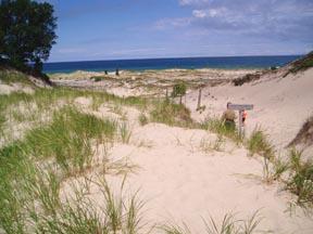Lake Michigan Dunes